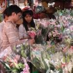 Thị trường - Tiêu dùng - Hoa tươi tăng giá mạnh