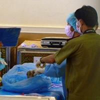 Máy bay rơi ở Lào: Khám nghiệm thi thể nạn nhân