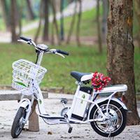 Thế nào là xe đạp điện chất lượng tốt?