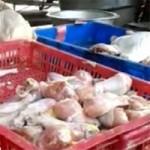 Thị trường - Tiêu dùng - Thịt gà ươn chảy để cả năm vẫn đắt hàng
