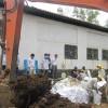 Chôn thuốc trừ sâu: Dừng khai quật vì thiếu tiền