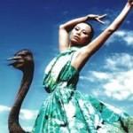 """Thời trang - Kim Thoa bị ví là """"thảm họa thời trang"""""""