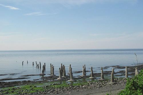 Những tác phẩm kì lạ bên dòng sông ở Canada - 3