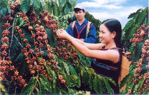 Việt Nam có thêm 8 kỷ lục châu Á - 5