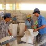 Thị trường - Tiêu dùng - Vì sao hạ mục tiêu xuất khẩu gạo ?