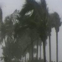 Những cơn bão mạnh nhất trong lịch sử thế giới
