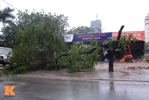 Siêu bão Haiyan đã ở biên giới Việt - Trung - 1