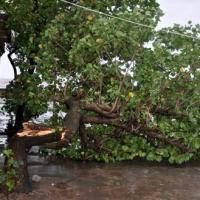 Siêu bão Haiyan đã ở biên giới Việt - Trung