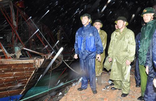 Toàn cảnh siêu bão Haiyan qua ảnh - 11