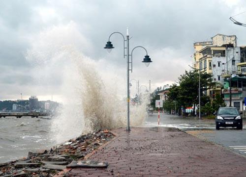 Toàn cảnh siêu bão Haiyan qua ảnh - 21