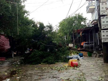 Toàn cảnh siêu bão Haiyan qua ảnh - 13