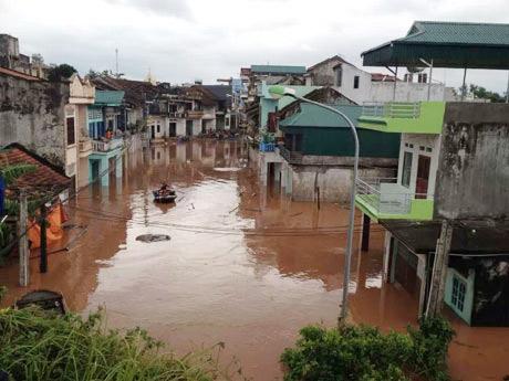 Quảng Ninh: 4 người mất tích, thiệt hại 200 tỷ đồng sau bão Haiyan - 1