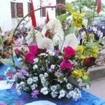 Giáo dục - du học - Bộ GD không nhận hoa ngày Nhà giáo Việt Nam