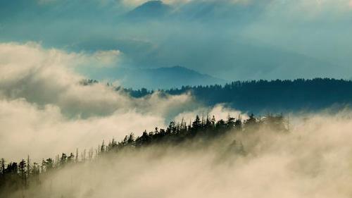 Vẻ đẹp hoang dại của dãy núi Great Smoky - 6