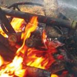 Ẩm thực - Bắp chuối rừng lam cá suối