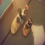 Phim hoạt hình Larva: Trò chơi trốn tìm