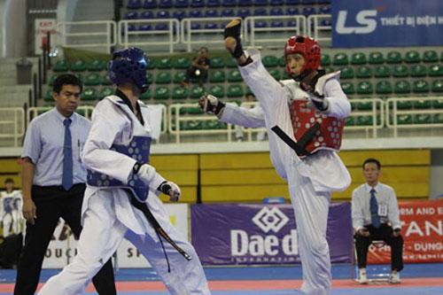 Đội tuyển Taekwondo Việt Nam tại SEA Game 27: Quyết giành 4 HCV - 1