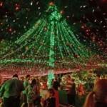 Tin tức trong ngày - Úc: Ngôi nhà lắp 50 vạn đèn nháy đón Giáng sinh