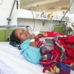 Sức khỏe đời sống - Cứu sống bệnh nhân bị rắn hổ mang cắn suýt chết