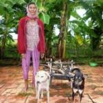 Tin tức trong ngày - Bà lão 78 tuổi và cỗ xe chó kéo