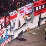 Bóng đá - CĐV ngã vỡ đầu vì ăn mừng Ajax thắng Barca