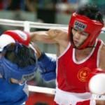 Thể thao - Đội tuyển boxing Việt Nam dự SEA Games 27: Lo né Thái Lan, Philippines