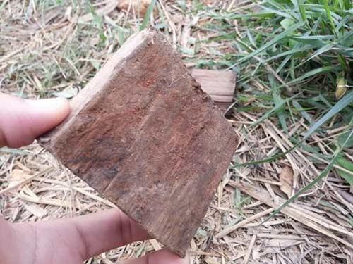 Hưng Yên: Dân bức xúc vì mộ cổ bị đào trộm - 3