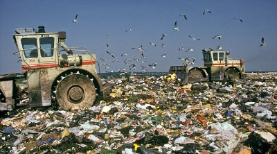 Vứt hơn 4 triệu bảng Anh vào bãi rác - 3