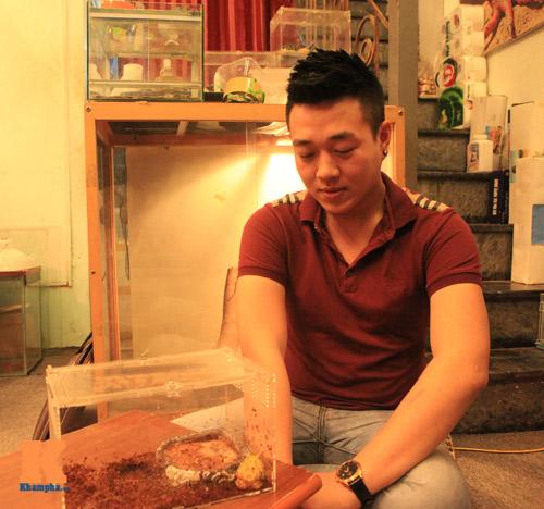 Những chú ếch trị giá tiền triệu của teen Việt - 9