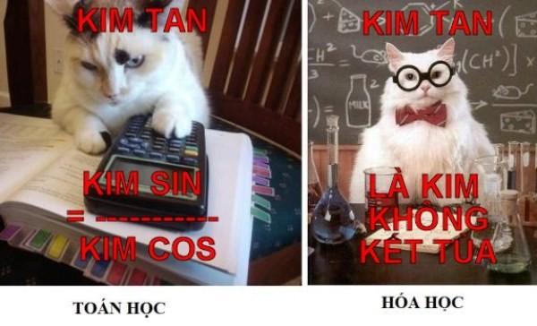 Ảnh chế hài hước về Kim Tan - 6
