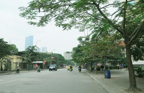 Hà Nội sắp có phố mang tên Bạch Thái Bưởi - 7