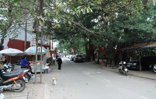 Hà Nội sắp có phố mang tên Bạch Thái Bưởi - 6