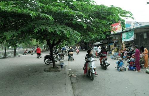 Hà Nội sắp có phố mang tên Bạch Thái Bưởi - 1