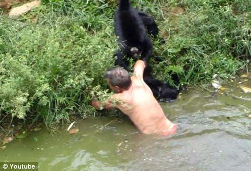 Những vụ bợm rượu say xỉn bị động vật tấn công - 4