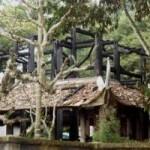 Tin tức trong ngày - Đền thờ Lê Lai cháy rụi trong đêm