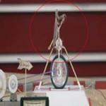 Top clip: Côn trùng sạc điện smartphone
