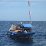 Tin tức trong ngày - Mất tích khi cứu ngư dân gặp nạn trên biển