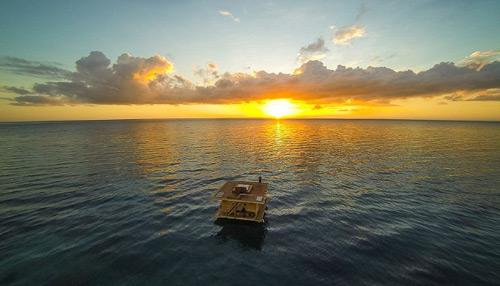 Ngủ với cá ở khách sạn dưới lòng đại dương - 1