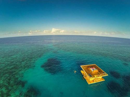 Ngủ với cá ở khách sạn dưới lòng đại dương - 2