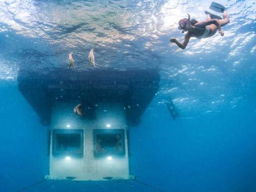 Ngủ với cá ở khách sạn dưới lòng đại dương - 4