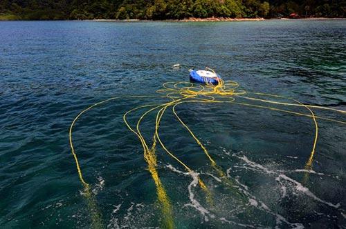 Thử cảm giác đi bộ dưới đáy biển ở đảo Sapi - 8