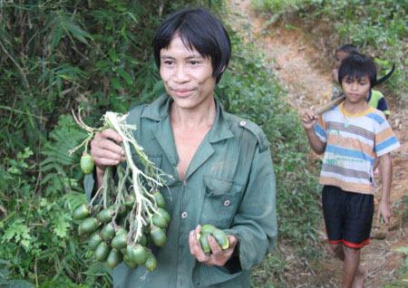 """""""Người rừng"""" Hồ Văn Lang muốn có vợ - 1"""