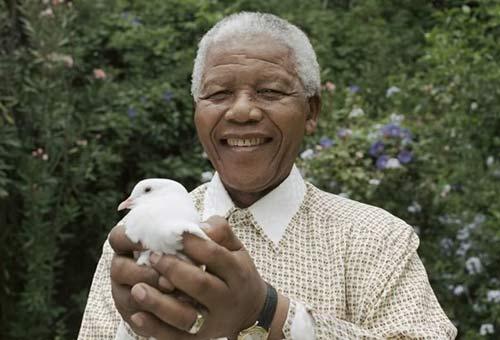 Nelson Mandela lại nhập viện vì bệnh phổi - 1