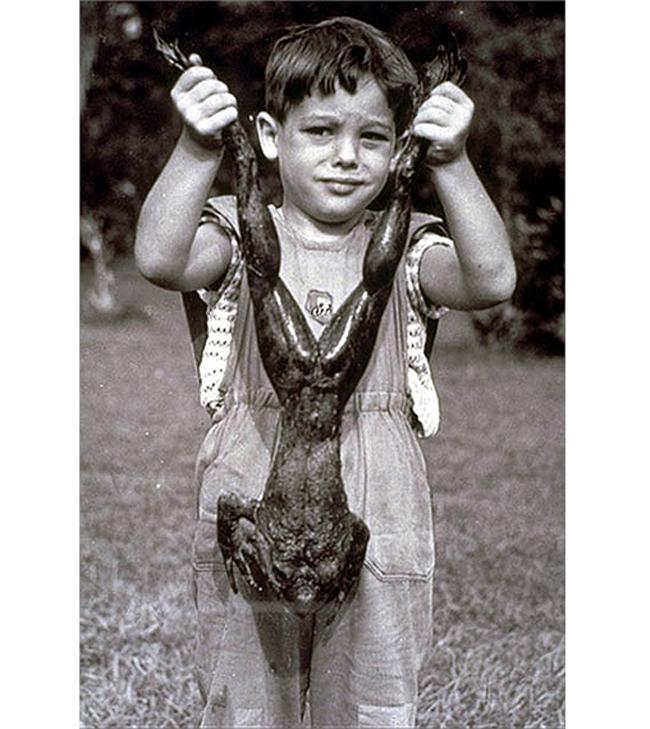 Ếch Goliath là loài ếch lớn nhất.