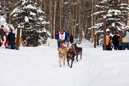 Những lễ hội mùa đông  độc đáo nhất thế giới - 1