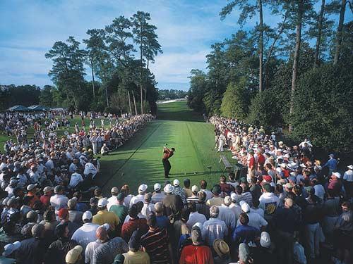 Tiger Woods: Tượng đài sống của làng golf (P2) - 1