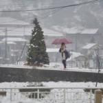 Tin tức trong ngày - Chùm ảnh: Tuyết trắng trời ở Sa Pa