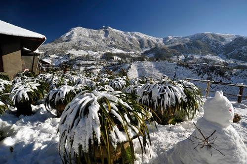 Những hình ảnh đẹp nhất về Sapa mùa tuyết rơi - 2