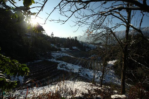 Những hình ảnh đẹp nhất về Sapa mùa tuyết rơi - 8