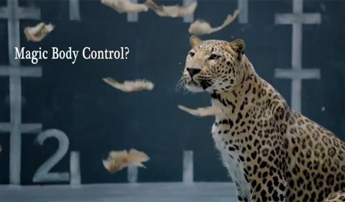 Jaguar quảng cáo chế nhạo gà của Mercedes-Benz - 1